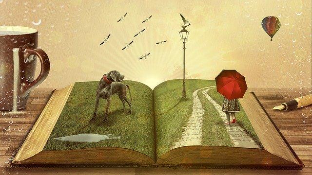 Příběh, kniha